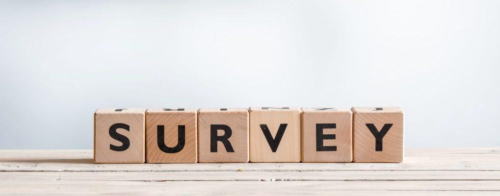 Expat Survey